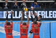 Volley Stop Coppe Europee