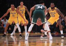 Bolla NBA
