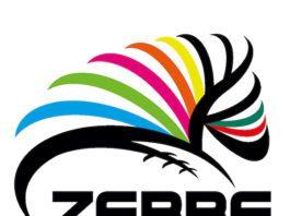 Logo Zebre Rugby